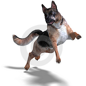 German Shepherd Dog Royalty Free Stock Images - Image: 15448499