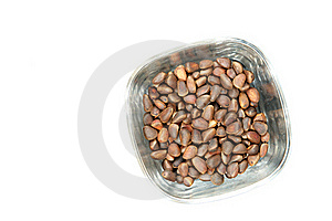 Pine Nuts Royalty Free Stock Photography - Image: 15448877