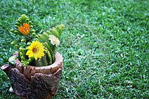 Flowers Stock Images - Image: 15450564