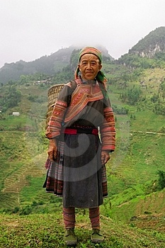 Hmong Flowered Grandmother Stock Photo - Image: 15456080