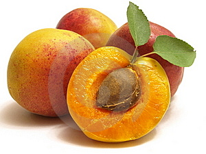 Ripe juicy apricot Stock Photo