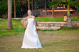 Young Bride In Dress Stock Photo - Image: 15468560