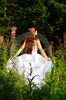 Bride Outdoor Stock Photography - Image: 15469712