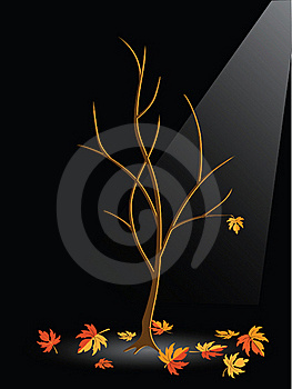 Autumn Tree Without Leaves Stock Photo - Image: 15476620