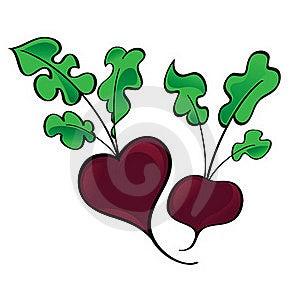 Fresh Vegetable Beet Royalty Free Stock Photo - Image: 15477175