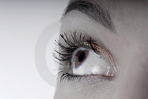 Beautiful eye Stock Image