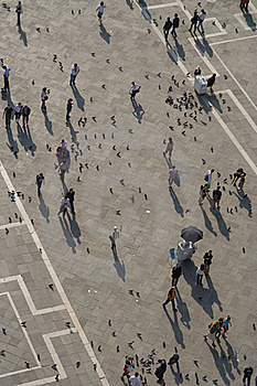 Square De San Marco In Venice From Birds View Stock Images - Image: 15511724