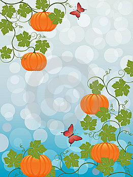 Floral Background With A Pumpkin Stock Photos - Image: 15514273