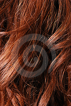 Close-up Of Natural Hair Stock Photo - Image: 15517940