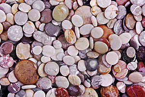 Wet Sea Stones Background Stock Photo - Image: 15520770