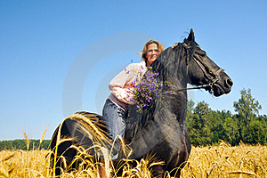Woman Rides Pretty Black Horse In Field Royalty Free Stock Images - Image: 15523249