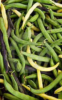 Tri Color Beans Royalty Free Stock Images - Image: 15526189
