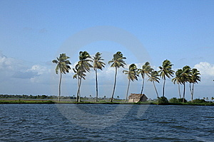 Backwaters Of Kerala Royalty Free Stock Images - Image: 15529449