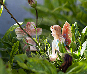 Two Fairy On Vegetation Royalty Free Stock Photography - Image: 15537237