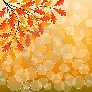 Autumn Background Royalty Free Stock Images - Image: 15537259