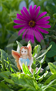 Fairy On Vegetation Royalty Free Stock Image - Image: 15537316