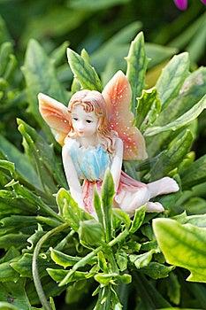 Fairy On Vegetation Stock Photo - Image: 15537360