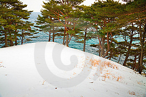 Hill In The Snow Royalty Free Stock Photo - Image: 15539105