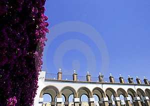 Flowers With Architecture Royalty Free Stock Photos - Image: 15566348