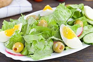 Egg Salad Royalty Free Stock Photos - Image: 15577258
