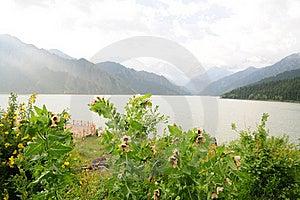 Urumqi Mountain Lake Royalty Free Stock Images - Image: 15584979