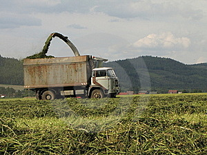 Harvesting Stock Images - Image: 15587184