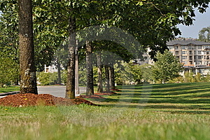 Path Through The Landscaped Park Stock Images - Image: 15594374