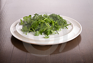 Dish With Parsley And Fennel Stock Image - Image: 15604011