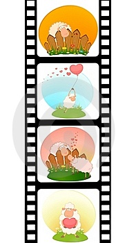Blank Film Colorful Strip With Sheep Royalty Free Stock Photography - Image: 15607347