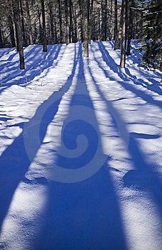 Sripes Royalty Free Stock Image - Image: 15619156