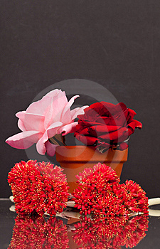 Flowers With Reflection Royalty Free Stock Photography - Image: 15624647