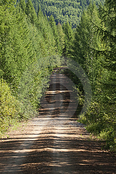 Ascending Dirt Road Royalty Free Stock Photography - Image: 15650787