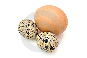 Quail And Chicken Eggs Royalty Free Stock Photo - Image: 15667735