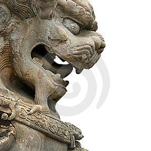 Asian Lion Background Royalty Free Stock Image - Image: 15670766