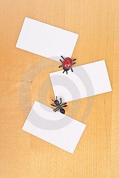 Insects And Three Blank Cards Royalty Free Stock Photo - Image: 15670825