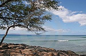 Shoreline Royalty Free Stock Photo - Image: 15672955