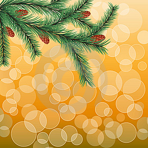 Floral Background With A Fir Twig Royalty Free Stock Photography - Image: 15695437