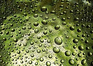 Many Water Drops Stock Image - Image: 15695521
