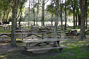 Picnic Tables Stock Photos - Image: 1576353