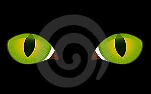 Image Of Cat Eyes Stock Photo - Image: 15711130