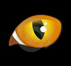 Image Of Cat Eyes Stock Images - Image: 15711134