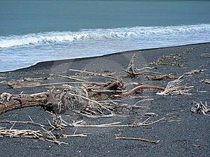 West Coast NZ Stock Photography - Image: 15722312