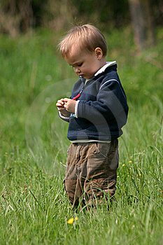 Boy In The Grass Royalty Free Stock Photography - Image: 15723187
