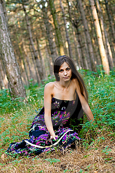 Girl At The Forest Stock Photography - Image: 15725452