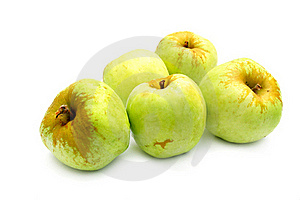 Green Apples Stock Image - Image: 15728501