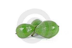 Unripe Walnuts Royalty Free Stock Image - Image: 15745096