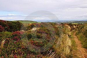 Cornish Coastline Royalty Free Stock Image - Image: 15748286
