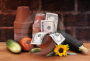 Pots With Growing Money Royalty Free Stock Photography - Image: 15749437
