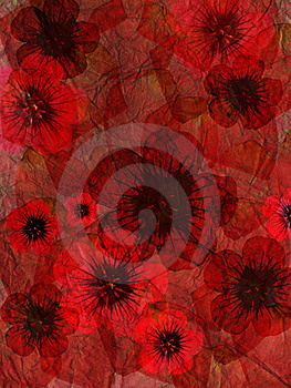 Flowers With Red Background Royalty Free Stock Photos - Image: 15761288