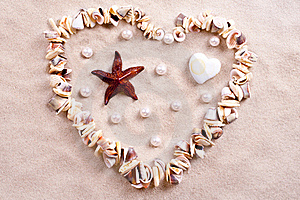 Seashells In Sand Stock Photography - Image: 15769622